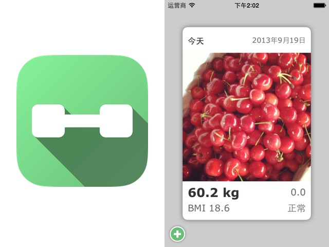 Daily Weight Tracker V1.7 Icon and Home