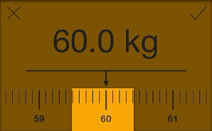Weight Ruler Scale
